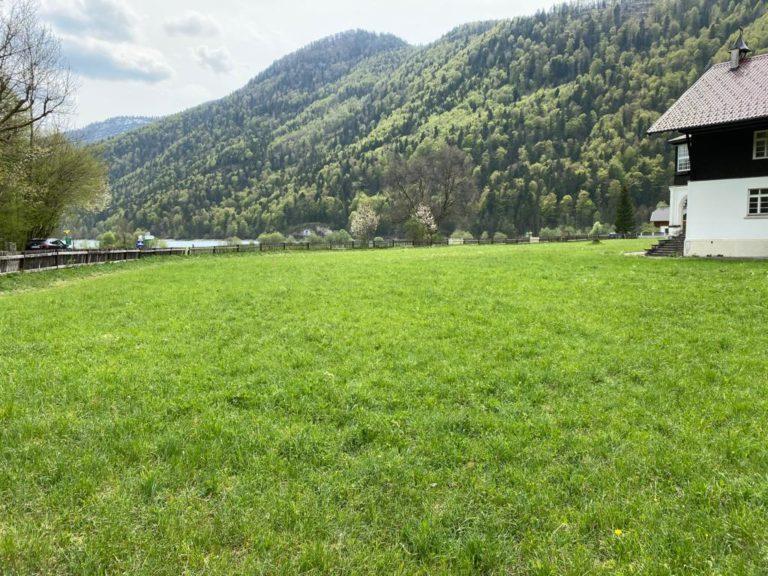 Seewiese Hintersee Faistenau